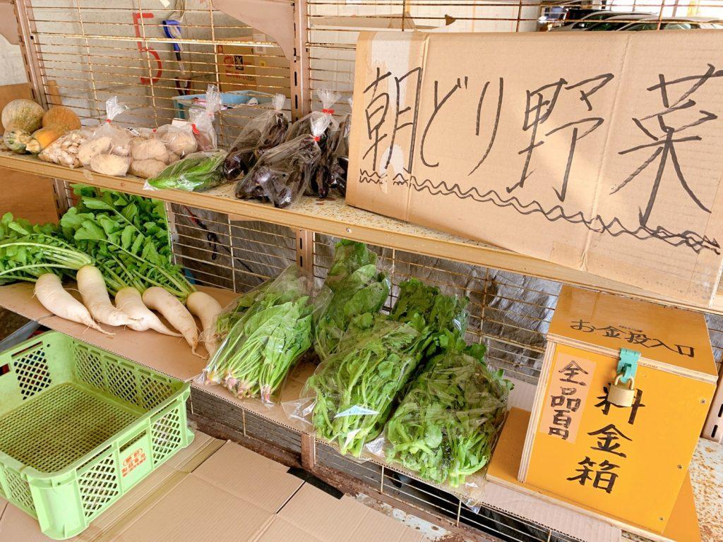 朝採り野菜